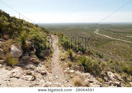 permian reef trail
