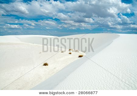 sand dunes on the edge of a salt playa