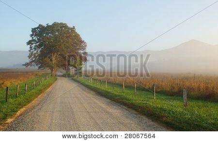 Cades Cove road in fog at sunrise