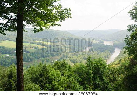 Allegheny River and forest from an overlook