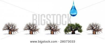hohe Auflösung konzeptionellen Reihe von 3d Bäumen ohne Blätter und einer grünen Sommer oder Frühling Baum mit einer