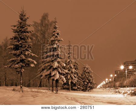 Winter Evening In City.