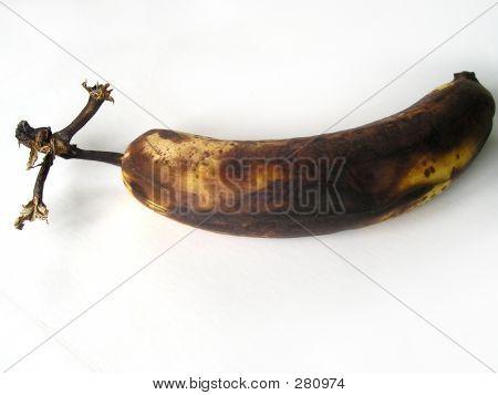 Rotten Banana On White