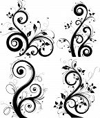 image of floral design  - Vector illustration for using in different ways - JPG