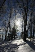 stock photo of winter landscape  - winter landscape - JPG