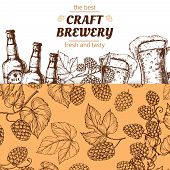 Craft Brewery Banner Template With Hand Drawn Hops And Beer. Illustration Of Brewery Beer Alcohol, P poster