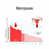Menopause Chart. Estrogen Level And Aging. poster