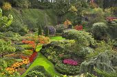 pic of garden eden  - Phenomenally beautiful and picturesque garden for walks and supervision over flowers and trees - JPG