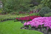 stock photo of garden eden  -  Phenomenally beautiful and picturesque garden for walks and supervision over flowers and trees - JPG
