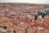 The well-known orange rocks in Bryce canyon in state of Utah USA poster