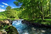 Beautiful Summer Landscape By The Small Forest River. Raging Water Flow Among The Rocks On The Shore poster