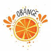 Vector Hand Draw Orange Illustration. Slice Of Orange With Juice Splashes Isolated On White Backgrou poster