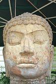 Постер, плакат: Каменная скульптура Будды головы