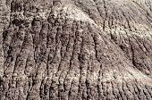 stock photo of paleozoic  - Blue Mesa - JPG