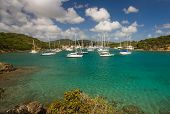 image of tropical island  - Coast and turquoise harbour of tropical island - JPG
