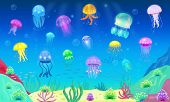 Jellyfish Vector Ocean Jelly-fish Or Sea-jelly And Underwater Nettle-fish Or Medusae Illustration Se poster