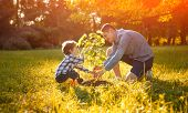 Father And Son In Planting Tree Under Sun With Lens Flare Effect. Family Time Outdoors poster