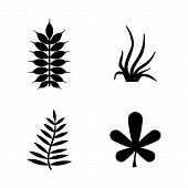 Plants, Leafs, Flora. Simple Related Vector Icons Set For Video, Mobile Apps, Web Sites, Print Proje poster