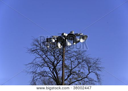Outdoor Lamps And Tree