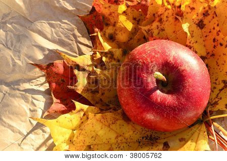 Apple And Autumn Leaves