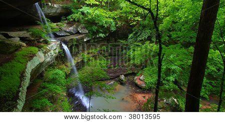 Beautiful Alabama Scenery