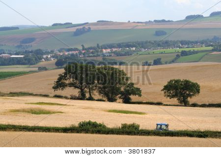 Country Scene With Tractor