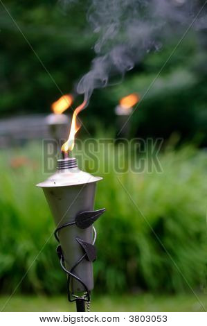 Tiki torches In Garden