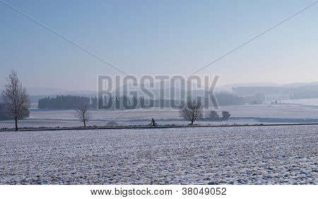 Winter Landscape With Cyclist