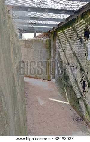 German Bunker--Juno Beach
