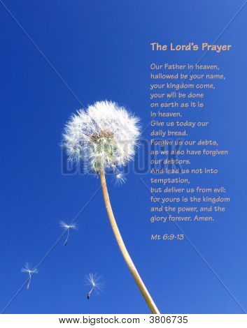 The Lord\'S Prayer - Dandelion Seeds Floating On Blue Sky (English)