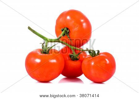 Fresh Red Tomatoes On Bunch