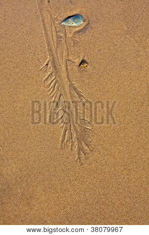 abstract beach sand design