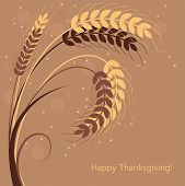 picture of fall-wheat  - vector fall background with wheat ears - JPG