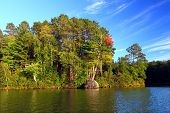 stock photo of legion  - Beautiful foliage along the shoreline of Sweeney Lake in northwoods Wisconsin - JPG