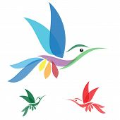 picture of bird paradise  - Isolated abstract humming bird in white background - JPG