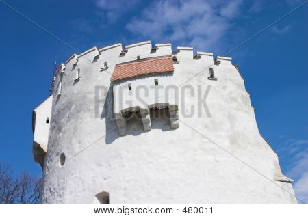 White Bastion Landscape
