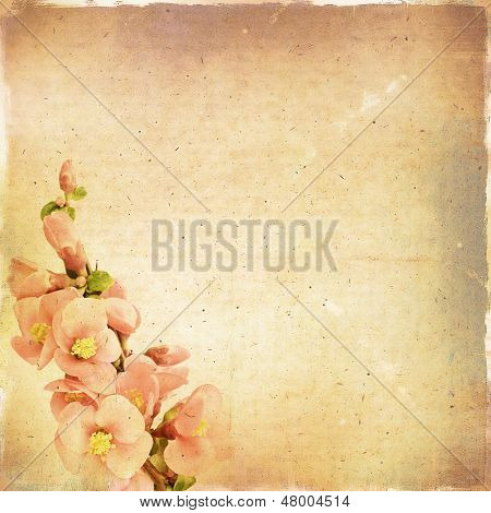 Vintage Floral Background With Pink Flowers On A Brown Background Old Paper Grunge, For Any Of Your