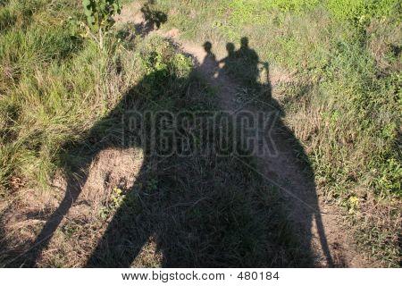 Passeio de elefante - Nepal