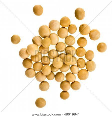 soybeans surface close up isolated on white  background