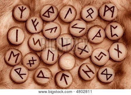 Runes On The Fur
