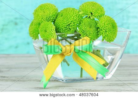 Beautiful green chrysanthemum in bowl on table on blue background