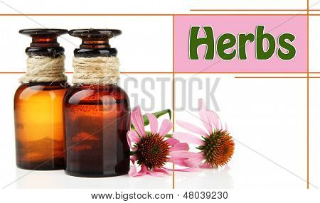 Medicine bottles with purple echinacea, isolated on white