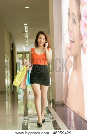 Elegant Lady At Shopping