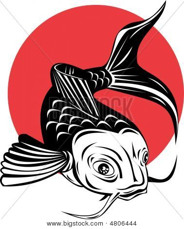Koi Carp Stock vector