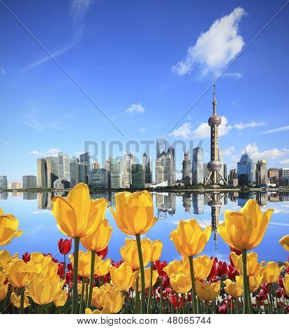 Yellow Tulips Prospect Of Shanghai The Bund's Landmark Skyline