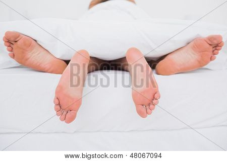Rear view of a couple having sex in bed