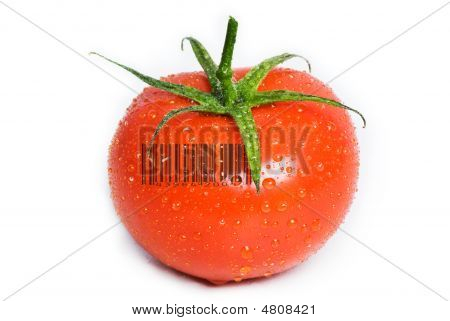 Isolated Wet Tomato.