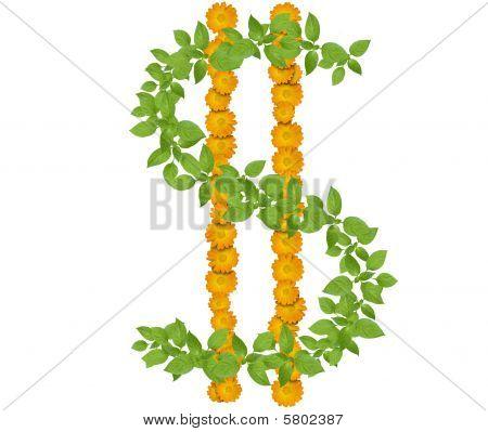 Flowers dollar symbol