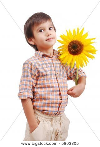 Very Cute Boy Hugging Sunflower As Friend