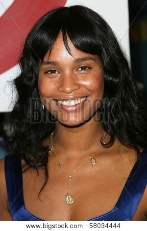 Joy Bryant  at the Rogan For Target Debut at Barneys New York. Barneys New York, Beverly Hills, CA. 05-15-08